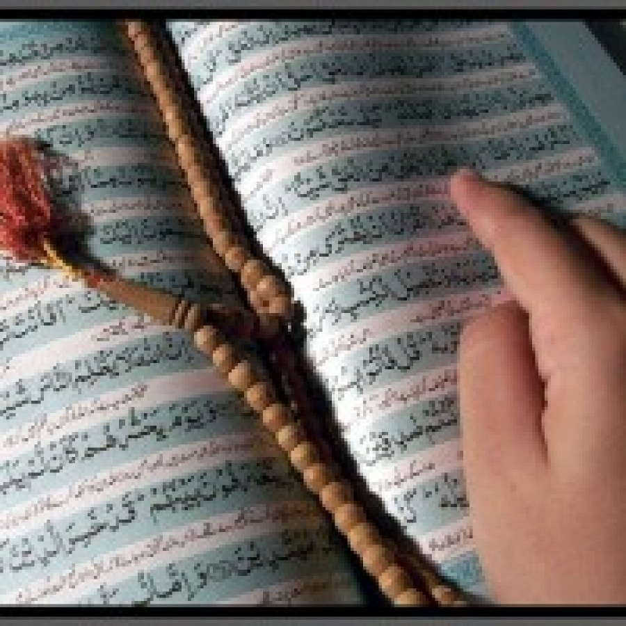The Order of the Qur'an's Revelation and the Growth of the Qur'anic Sciences