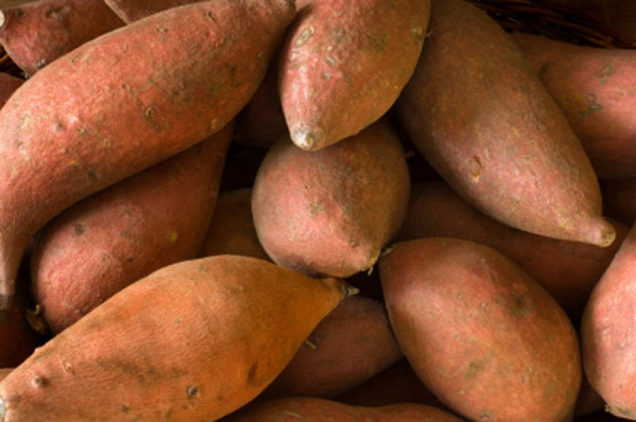 Yams nutrition facts