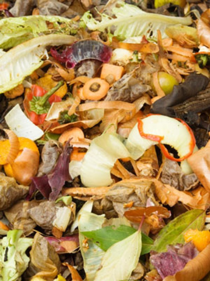 Start a Perfect Compost Pile