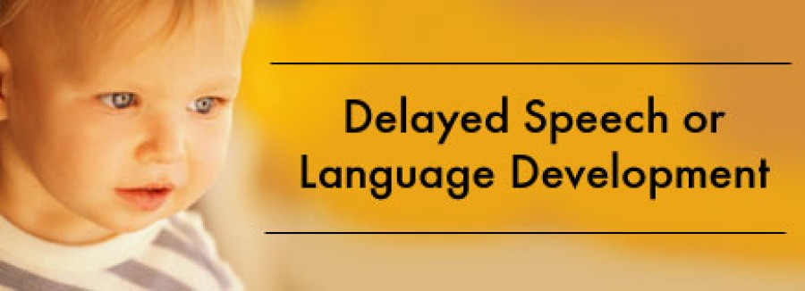 Delayed Speech or Language Development - part 1