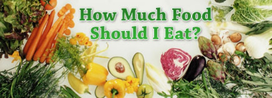 How Much Food Should I Eat?
