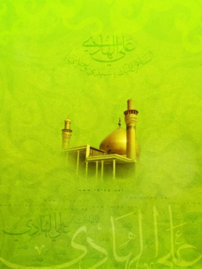 What authors say about Imam Hadi (a.s.)?