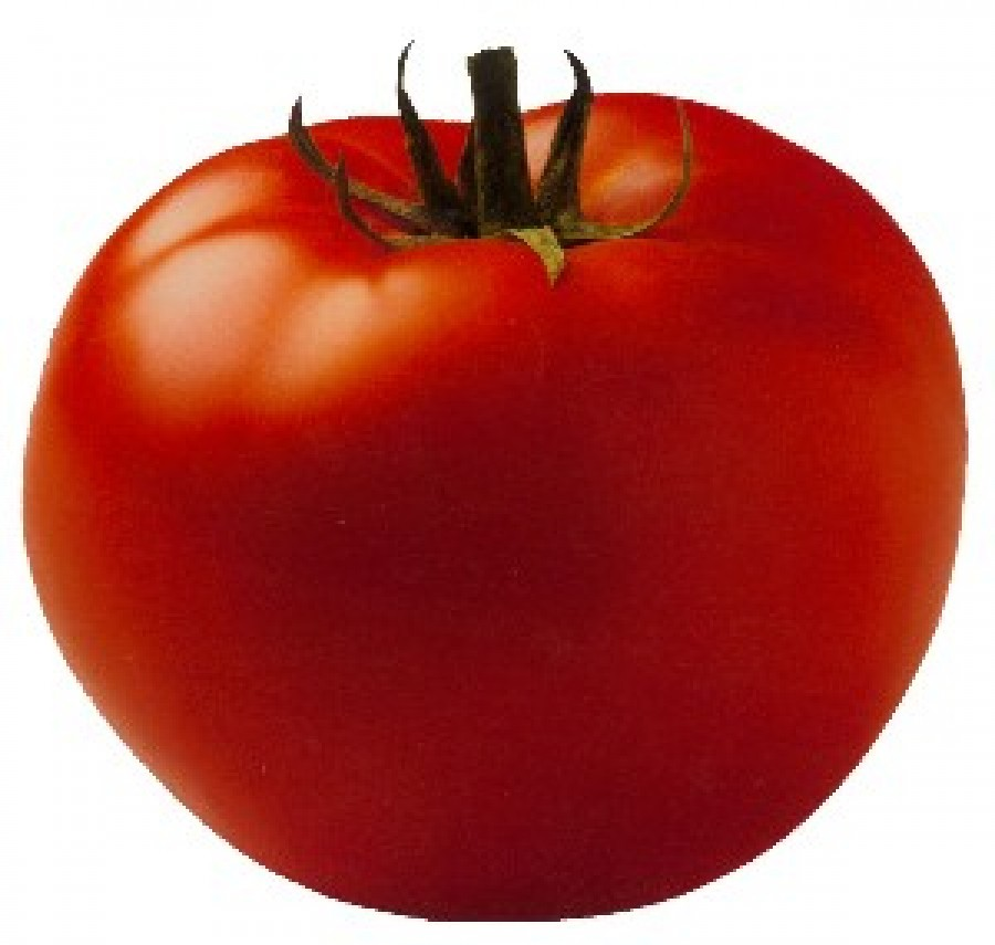 Tomatoes, the best source of lycopene
