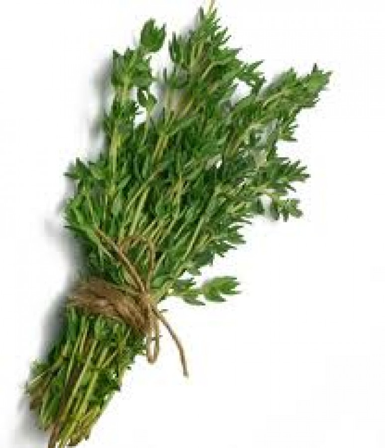 Thyme herb nutrition facts