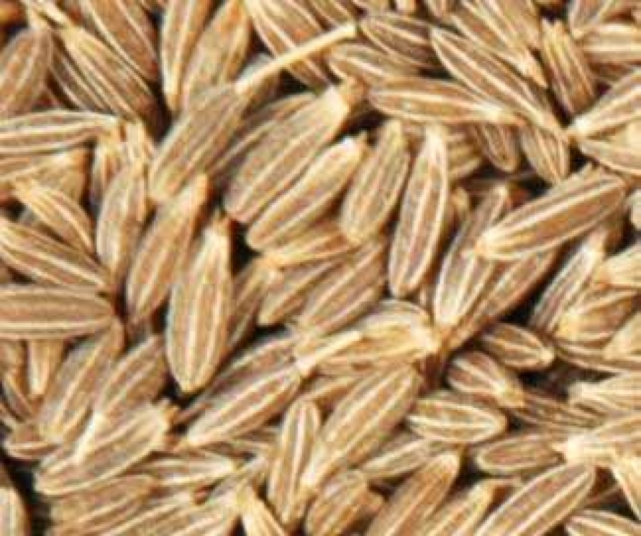 Cumin seeds nutrition facts