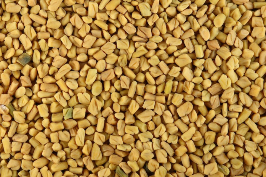 Fenugreek seeds nutrition facts