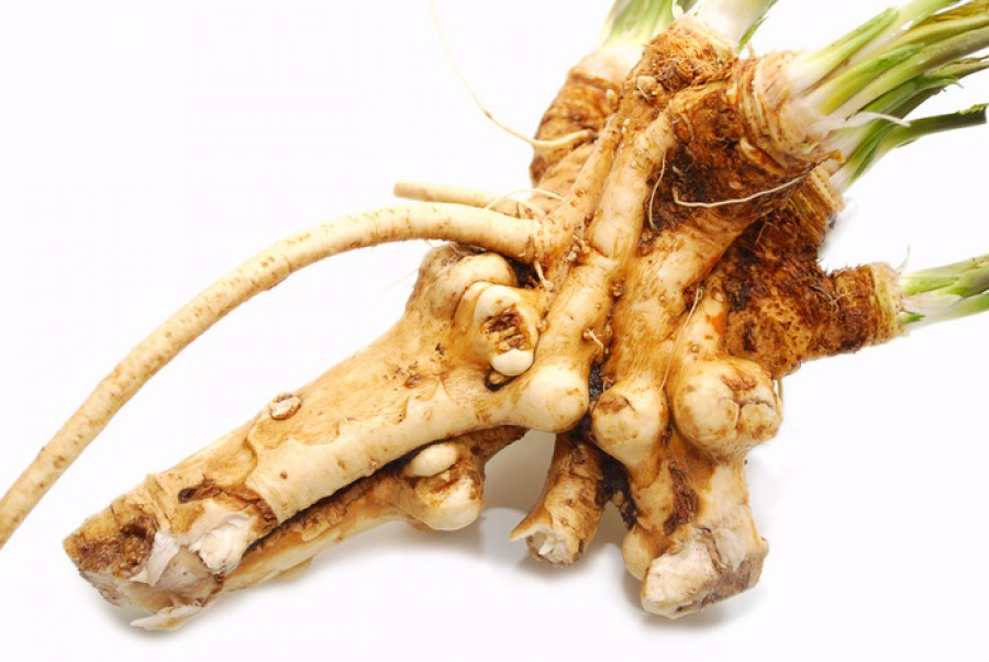 Horseradish nutrition facts