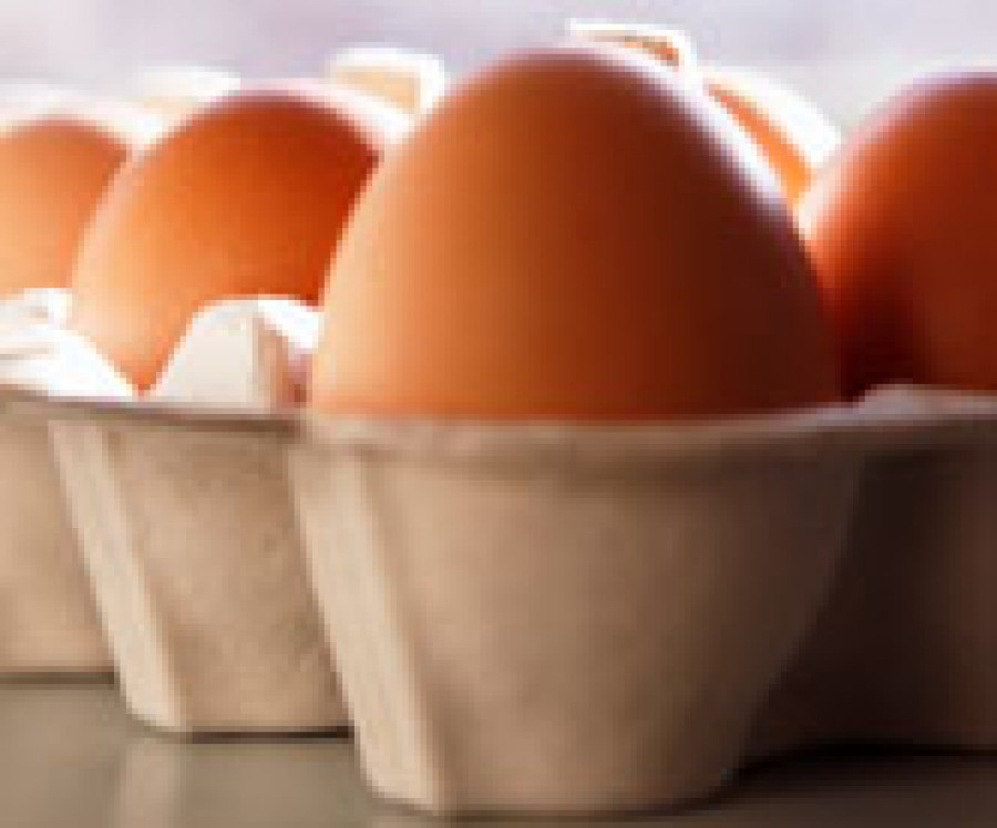 Eating egg yolks as 'bad as smoking'