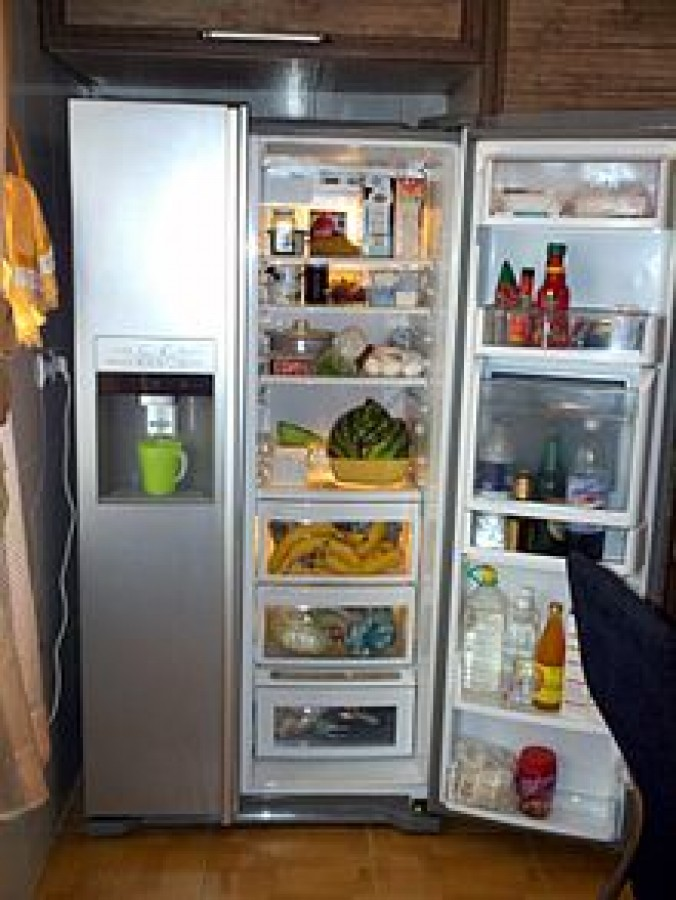 Buying a Refrigerator
