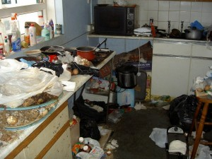 The 5 Dirtiest Secrets of Your Kitchen