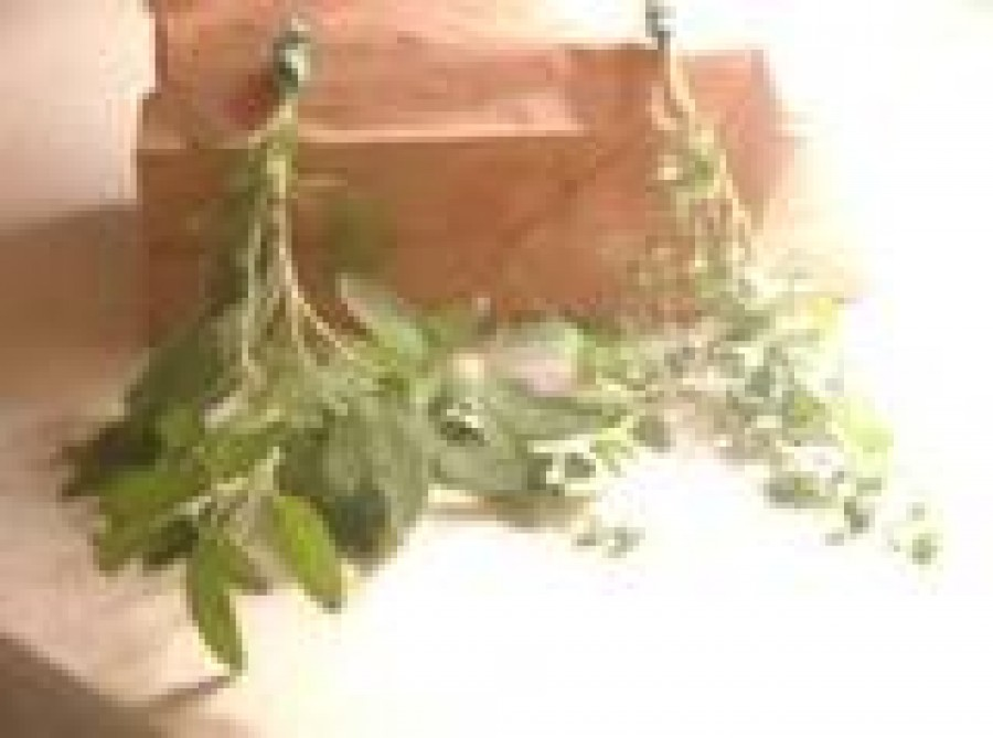 How To Dry and Preserve Your Garden Fresh Herbs
