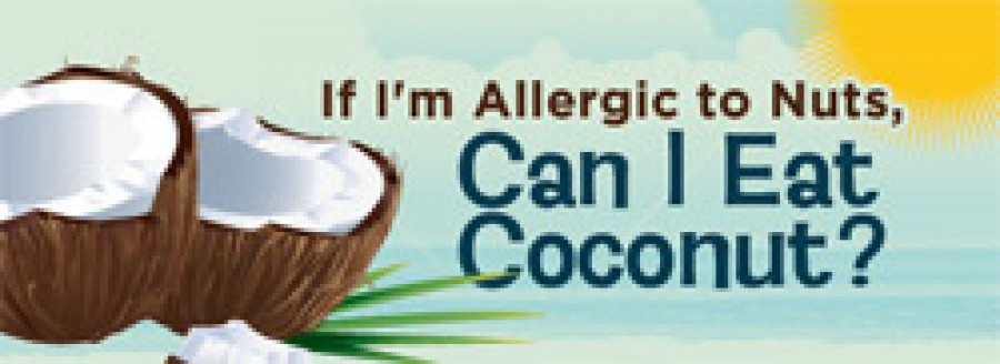 If I am allergic to Nuts, Can I Eat Coconut?