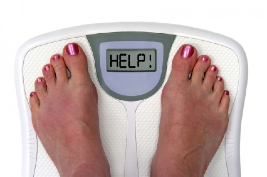 Weight Loss Guide for the Perplexed...