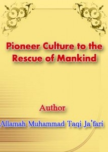Pioneer Culture to the Rescue of Mankind