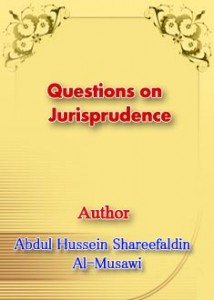 Questions on Jurisprudence