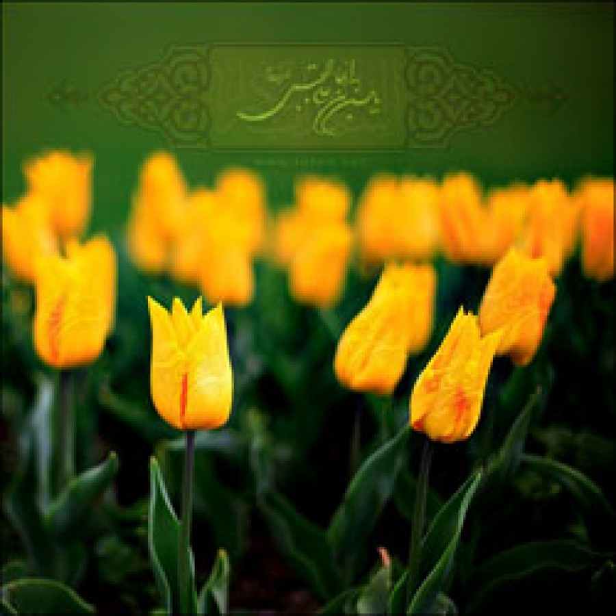 Birth and Childhood of Imam Hassan (a.s.)